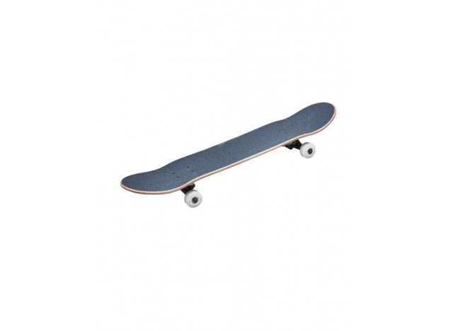 skate-completo-wasteland-tony-hawk